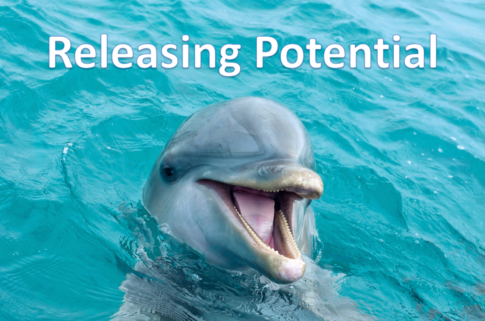 release potential